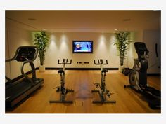 Home Gym Designs - Home and Garden Design Idea's.  OK!  I really like that!  It's hard to run on the treadmill during the winter...in the basement.  Adding extra lighting, off white/creamy paint and greenery would certainly help!!!  Doing this!