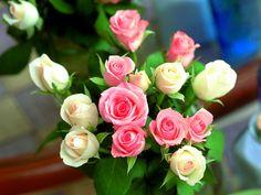 Lovely bunch of roses