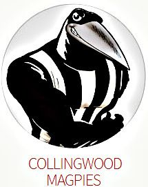 160 Best AFL Logos Amp Art Images On Pinterest In 2018 Art Logo Australian Football League And