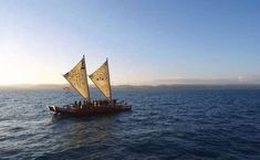 Discover Hawke's Bay aboard 'Te Matau a Māui'', a traditional Polynesian sailing waka (canoe), that has travelled across the world. Twin Cities, Canoe, Sailing Ships, Boat, Tours, Architecture, City, World, Building