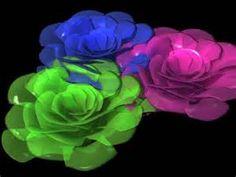 blomster-Startsidensøk-Bilder Rose, Flowers, Plants, Google, Pictures, Pink, Roses, Flora, Plant