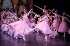 Bayer Ballet Company in The Nutcracker!  Backdrop (S3307) Kingdom of the Sweets