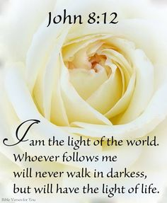 John 8:12 - I am the light of the world.  Whoever follows me will never walk in darkness, but will have the light of life.