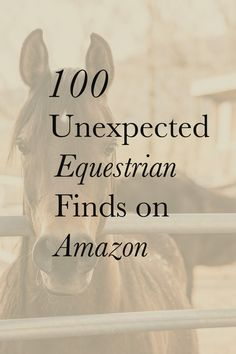 The most important role of equestrian clothing is for security Although horses can be trained they can be unforeseeable when provoked. Riders are susceptible while riding and handling horses, espec… Equestrian Gifts, Equestrian Outfits, Equestrian Style, Equestrian Fashion, Equestrian Shop, Horse Tips, My Horse, Horse Riding, Horse Accessories