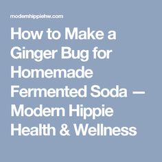 How to Make a Ginger Bug for Homemade Fermented Soda — Modern Hippie Health & Wellness