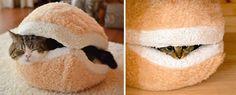 NapadyNavody.sk   25 úžasných nápadov na nábytok pre milovníkov mačiek
