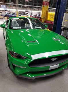 Spinel Green 2019 Ford Mustang Photographed