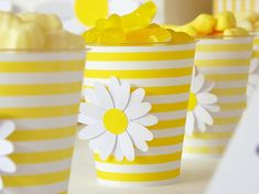 DAISIES Party