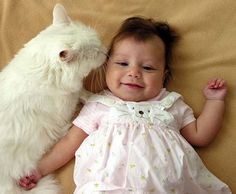 <b>In order from 25 to 1, the most important pictures ever taken of cats and their best friends, the babies.</b> Be careful with these because they are pretty dangerously cute.