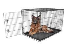 Carlson Secure and Compact Single Door Metal Dog Crate, Extra Large * Wow! I love this. Check it out now! : Dog kennels