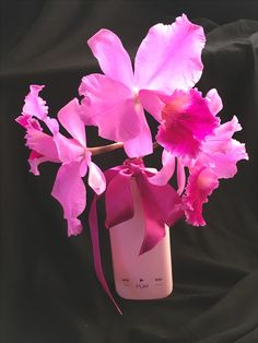Play it again! #givenchy #reuse #nature #orchids