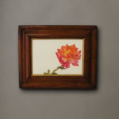 A Watercolour of a Rose  C 2010 England