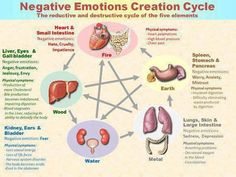 Negative Emotions & the 5 Elements:  Science of the East and West.  Somewhere in the middle, we are both correct.