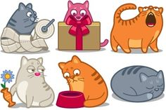 Cat Force Icons