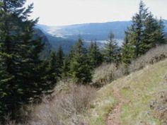 Nick Eaton Ridge Loop Hike - Hiking in Portland, Oregon and Washington