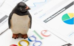 Penguin fights against web spam. Here's how to optimize your site to make Google's algorithm happy.