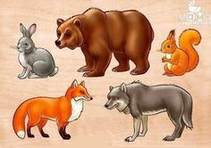 Zhanat Manibekova | VK Forest Animals, Baby Prints, Kids Education, Nursery Art, Animal Drawings, Easy Drawings, Preschool Activities, Kids And Parenting, Mammals