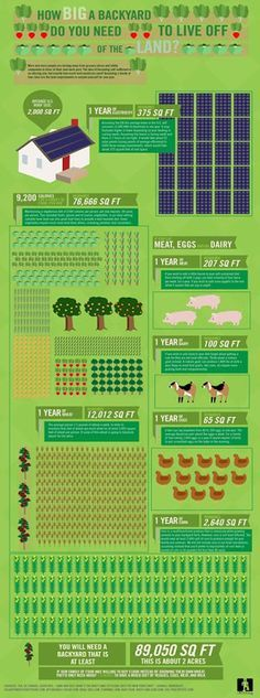 Amazing layout for a mini farm... and all on 2 acres!