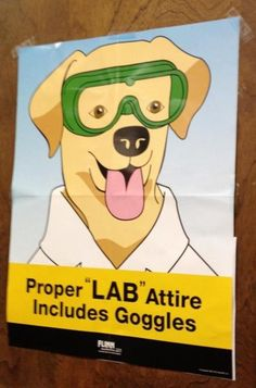 Lab Attire. I want this in my classroom if I teach science. :)