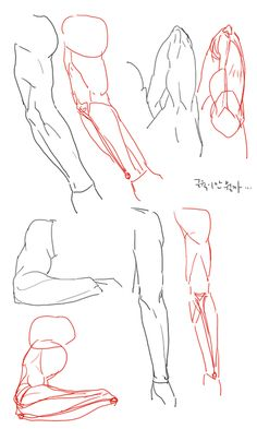 anime how to draw Body Reference Drawing, Body Drawing, Anatomy Reference, Art Reference Poses, Anatomy Sketches, Anatomy Drawing, Anatomy Art, Art Sketches, Tutorial Draw