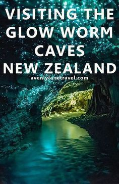 Visiting The Glow Worm Caves In New Zealand. This is a MUST see if you are ever… Visiting The Glow Worm Caves In New Zealand. This is a MUST see if you are ever travelling to New Zealand – Avenly Lane Travel Oceania Places To Travel, Places To See, Travel Destinations, Bucket List Destinations, Travel Tourism, Glow Worm Cave, Destination Voyage, New Zealand Travel, Trip To New Zealand