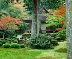 Image detail for -... Garden in Sanzen-in Temple, Buddhist temple in Ohara, near Kyoto