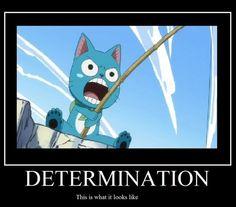 Fairy Tail    anime funny