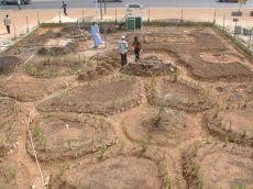 planting design - Portland Permaculture Guild