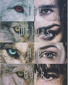 ⚔ Stark Kids. #gameofthrones #stark #hbo #jonsnow #aryastark #sansastark #branstark