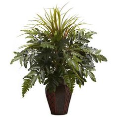 @Overstock.com - Mixed Grass and Fern in Decorative Planter Arrangement  - Beautiful, lush green fern leaves bursting from a decorative planter are complemented by tall, wisps of grassy stalks for a unique and intriguing combination of texture and color. Lend a refreshing accent to your home or office with this silk plant.   http://www.overstock.com/Home-Garden/Mixed-Grass-and-Fern-in-Decorative-Planter-Arrangement/8369523/product.html?CID=214117 $62.99