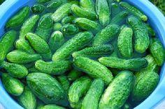 Pickles, Cucumber, Cooking Recipes, Salad, Vegetables, Food, Canning, Chef Recipes, Essen
