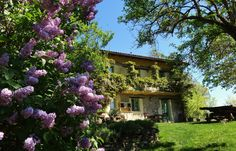 Spring is in the air in our little piece of Italian paradise <3 #agriturismo #piedmont #italy