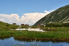 Retezat Around The Worlds, Spaces, Mountains, Nature, Travel, Viajes, Naturaleza, Destinations, Traveling