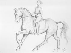 Impulsion Original Equine Art von Dressage by dressagedoodles, Horse Pencil Drawing, Horse Drawings, Animal Drawings, Art Drawings, Art Minimaliste, Horse Sketch, Deer Art, Figure Sketching, Unicorn Art