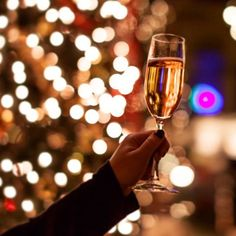 Spend New Years Eve with us! $50/person: 4 course pre-fixed menu. Call for reservations! (231) 943-2727 #tcmi #NYE