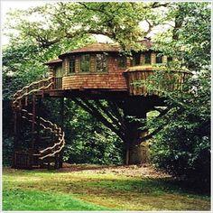 Great Tree Houses | Funny Buburuza