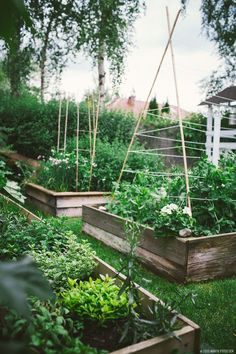 Potager Garden Dreamy Garden Inspiration for your summer garden. Get all the inspiration on the fresh exchange for your garden. Potager Garden, Veg Garden, Garden Cottage, Edible Garden, Garden Landscaping, Summer Garden, Garden Boxes, Garden Tips, Landscaping Ideas
