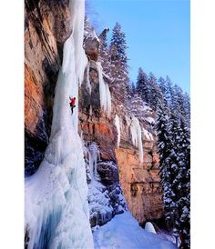 Daring climbers brave temperatures of -20 degrees and a terrifying 110 feet vertical drop to scale this spectacular wall of ice. The natural pillar, named The Rigid Designator, in Colorado, USA,  is one of the hardest ice climbs in the world.  Those that attempt it risk death if they lose their footing and slip.  Photographer Lucas Gilman watched as his friends Cam Brensinger and Caitlin Brensinger completed the climb.