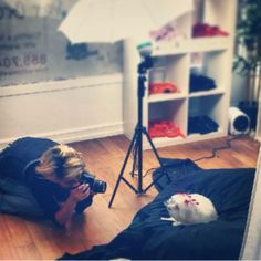 20 best sydnees in the news images on pinterest pet grooming san haley our professional is hard at work for our pet photo event at remember she will be taking picture today at our san marcos location and back to solana solutioingenieria Choice Image