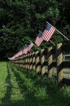 Old Glory, beautiful way to celebrate   The 4th at a horse barn or farm