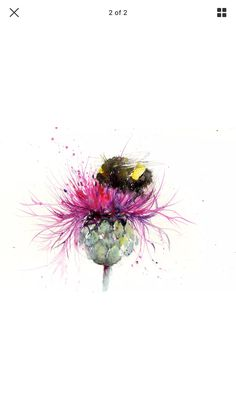 Bee on a thistle watercolour