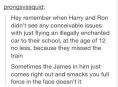 The Potter Gene...