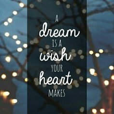A dream is a wish your heart makes! So go with it!