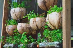 garrafas pet como vasos para jardins pequenos