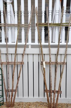 make these from branches