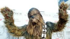 15 Chewbacca Facts in Honor of Peter Mayhew