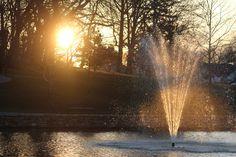 Salem Duck Pond