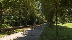 Schwarzenbergpark Neuwaldegg Sidewalk, Country Roads, Annual Pass, Wilderness, Sidewalks, Pavement, Walkways