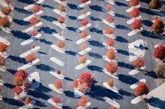 aerial patterns by alex maclean