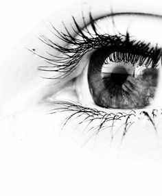 eye...beautiful...kinda like Stella's??....only not the right skin complexion. Either way, i love the contrast.